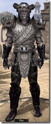 Bosmer Voidsteel - Male VR12 Epic Front