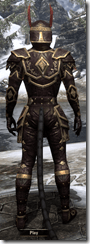 Imperial Brigandine - Male VR1 Superior Back