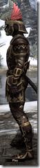 Imperial Brigandine - Male VR1 Superior Left