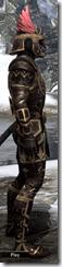 Imperial Brigandine - Male VR1 Superior Right