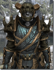 Bosmer Bone-Reinfroced - Male 38 Superior Close Front