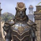 Sir Rhorlak of Baskpeak - NA