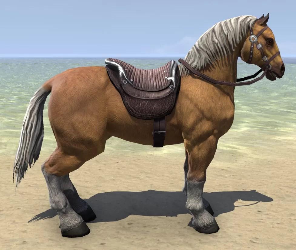 Eso Fashion Palomino Horse Elder Scrolls Online