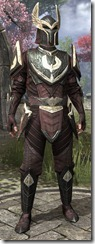 eso-imperial-city-ad-medium-male