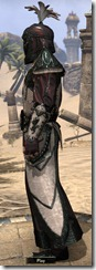 eso-imperial-city-dc-light-male-robe-2