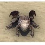 Kindlespit Dragon Frog
