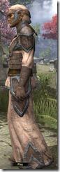 Dunmer Homespun Robe - Male Side