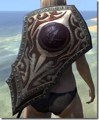 Outlaw Ruby Ash Shield 2