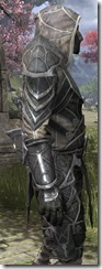 Thieves Guild Iron - Male Close Side