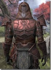 Thieves Guild Rubedite - Male Close Back