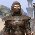 Thieves Guild Shadowspun