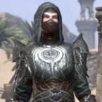 Thieves Guild Voidsteel