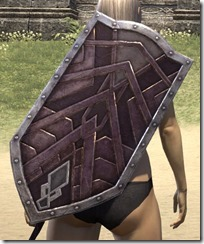 Ancient Orc Birch Shield 2
