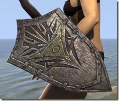 Dunmer Oak Shield
