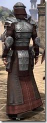 Battlemage Tribune Armor - Male Back
