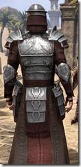 Battlemage Tribune Armor - Male Close Back