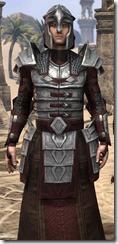 Battlemage Tribune Armor - Male Close Front