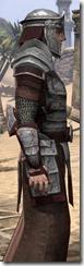 Battlemage Tribune Armor - Male Close Side