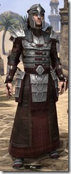 Battlemage Tribune Armor - Male Front