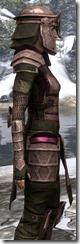 Centurion Dress Armor Dyed Close Side
