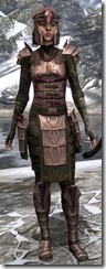 Centurion Dress Armor Dyed Front