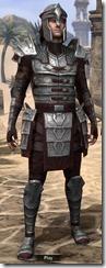 Centurion Dress Armor - Male Front