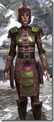 Centurion Field Armor Dyed Close Front
