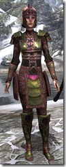 Centurion Field Armor Dyed Front