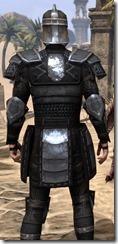Centurion Field Armor - Male Close Back