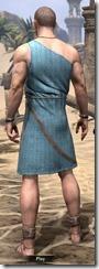 City Isle Tunic Dress - Male Back