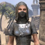 Crafty Lerisa's Thief Outfit