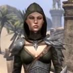 Elven Hero Armor