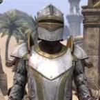 Lion Guard Elite