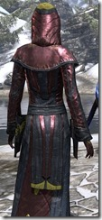 Mages Guild Formal Robes Dyed Close Back