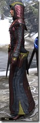 Mages Guild Formal Robes Dyed Side