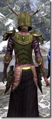Nedic Duraki Armor Dyed Close Back