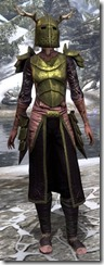 Nedic Duraki Armor Dyed Front