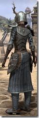 Nedic Duraki Armor - Female Back