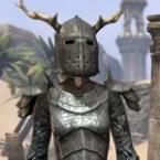 Nedic Duraki Armor