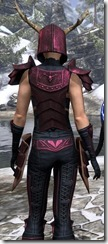 Nedic Perena Armor Dyed Close Back