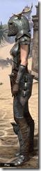 Nedic Perena Armor - Female Side