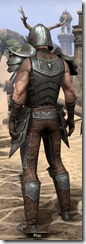 Nedic Perena Armor - Male Back