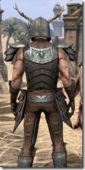 Nedic Perena Armor - Male Close Back
