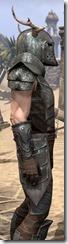 Nedic Perena Armor - Male Close Side