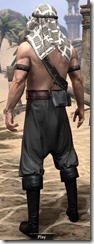 Pirate First Mate's Outfit - Male Back