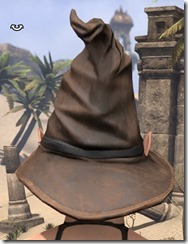 Clever Man Wizard Hat - Female Back
