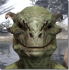 Small Brow Spines Argonian