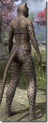 Jaguar Rosettes - Female Back