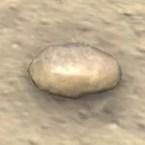 Potato, Wax