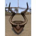 Ram Horns, Mounted